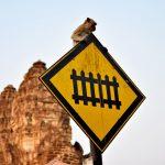 Lopburi, la bonita ciudad de los monos